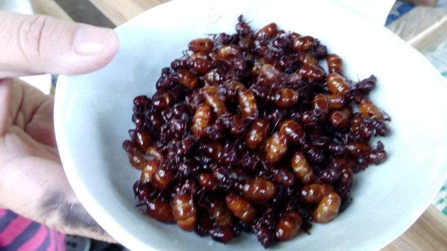 タイで人生初の虫を食べることになった