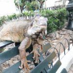 【エクアドル】グアヤキルのイグアナ公園でイグアナに襲撃される(笑)